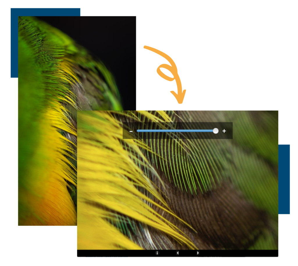 Two images. The first shows an image zoomed out and the second show that image zoomed in.